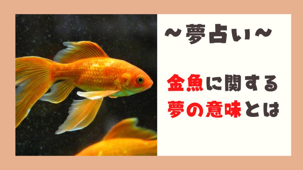金魚 夢占い