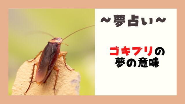 夢占いゴキブリ意味