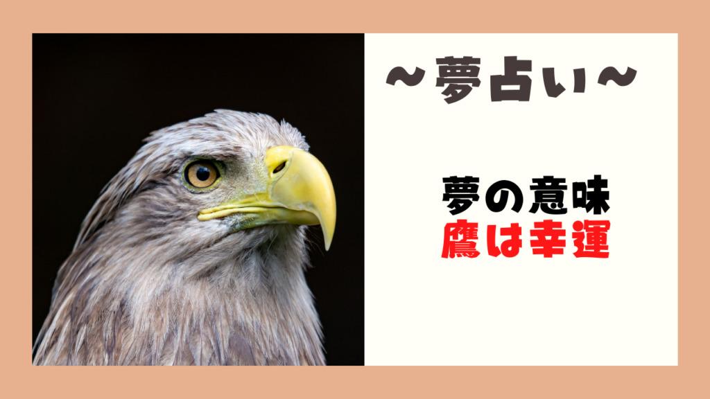 夢占い 鷹 意味